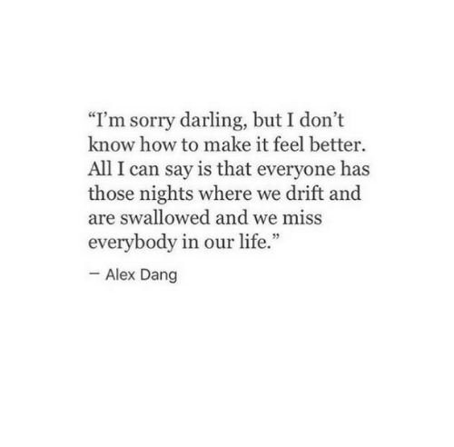 "All I Can Say Is: ""Im sorry darling, but I don't  know how to make it feel better  All I can say is that everyone has  those nights where we drift and  are swallowed and we miss  everybody in our life.""  Alex Dang"