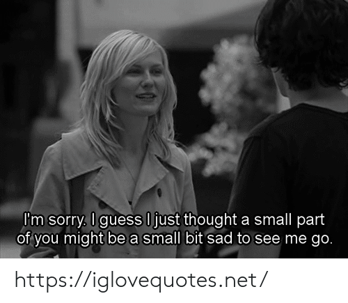 Sorry, Sad, and Thought: I'm sorry. Iguess Ijust thought a small part  of you might be a small bit sad to see me go. https://iglovequotes.net/