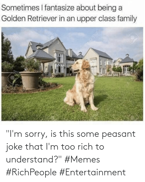 "rich: ""I'm sorry, is this some peasant joke that I'm too rich to understand?"" #Memes #RichPeople #Entertainment"