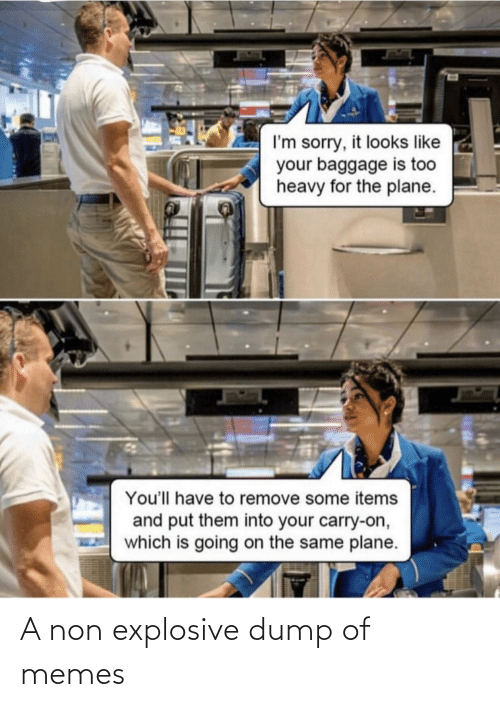 Memes, Sorry, and Plane: I'm sorry, it looks like  your baggage is too  heavy for the plane.  You'll have to remove some items  and put them into your carry-on,  which is going on the same plane. A non explosive dump of memes