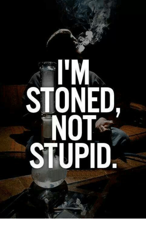 Memes, 🤖, and Stoned: IM  STONED  NOT  STUPID