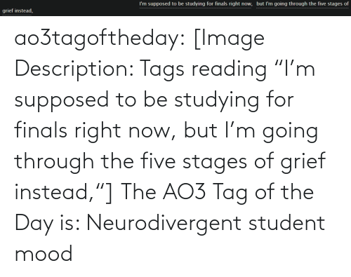 "tag: I'm supposed to be studying for finals right now, but l'm going through the five stages of  grief instead, ao3tagoftheday:  [Image Description: Tags reading ""I'm supposed to be studying for finals right now, but I'm going through the five stages of grief instead,""]  The AO3 Tag of the Day is: Neurodivergent student mood"