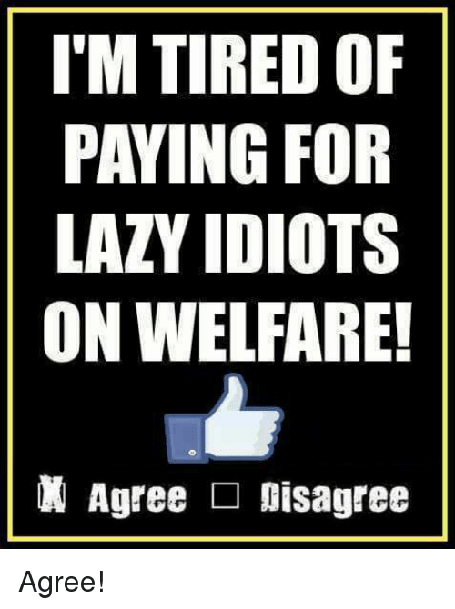 Lazy, Memes, and 🤖: I'M TIRED OF  PAYING FOR  LAZY IDIOTS  ON WELFARE!  Agree □ Disagree Agree!