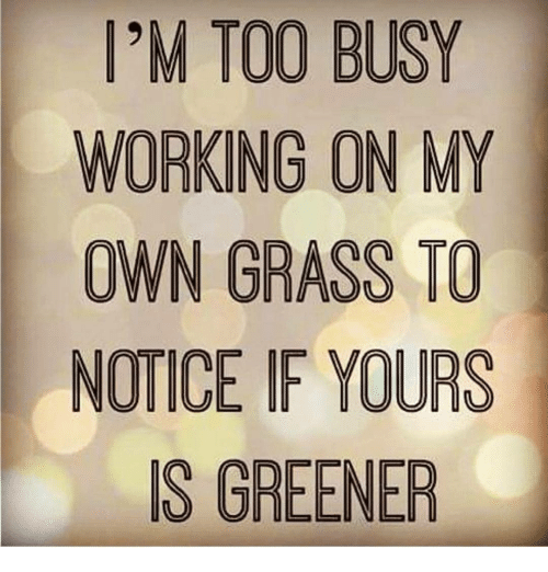 Memes, 🤖, and Working: IM TOO BUSY  WORKING ON MY  OWN GRASS TO  NOTICE IF YOURS  S GREENER
