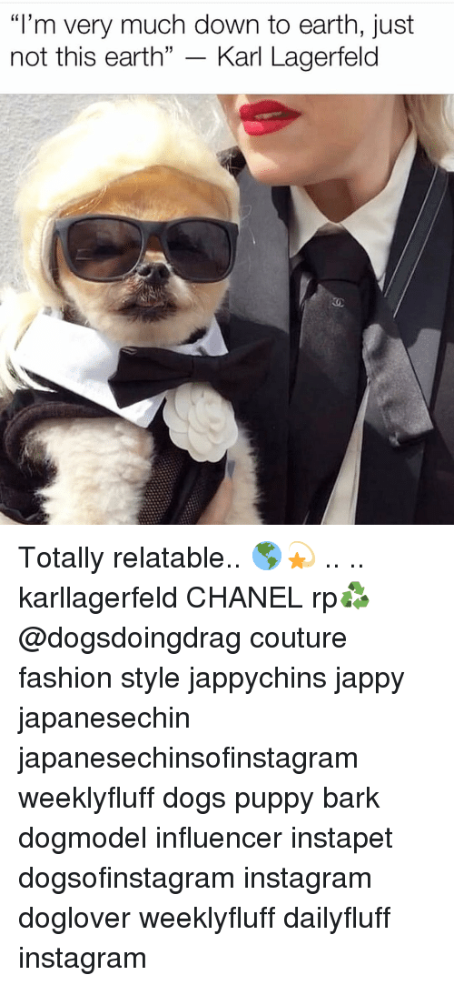 """Dogs, Fashion, and Instagram: """"I'm very much down to earth, just  not this earth"""" - Karl Lagerfeld Totally relatable.. 🌎💫 .. .. karllagerfeld CHANEL rp♻️ @dogsdoingdrag couture fashion style jappychins jappy japanesechin japanesechinsofinstagram weeklyfluff dogs puppy bark dogmodel influencer instapet dogsofinstagram instagram doglover weeklyfluff dailyfluff instagram"""