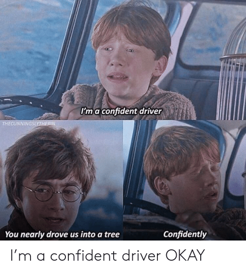 Drive, Okay, and Tree: Ima confident drive  THECUNNINGSLYTHERIN  Confidently  You nearly drove us into a tree I'm a confident driver OKAY