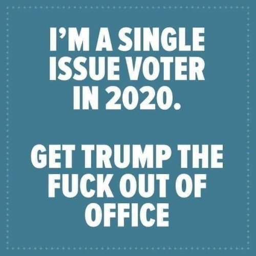 Office, Trump, and Single: I'MA SINGLE  ISSUE VOTER  IN 2020.  GET TRUMP THE  FUCK OUT OF  OFFICE