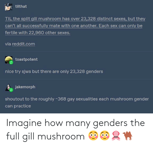 How Many: Imagine how many genders the full gill mushroom 😳😳🦑🐫