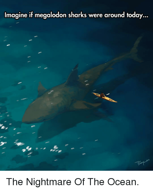 megalodon: Imagine if megalodon sharks were around today  ... <p>The Nightmare Of The Ocean.</p>