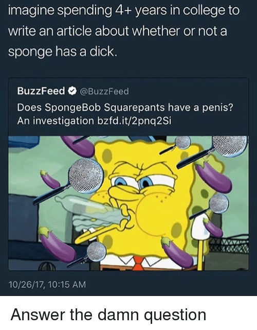 College, SpongeBob, and Buzzfeed: imagine spending 4+ years in college to  write an article about whether or not a  sponge has a dick  BuzzFeed @BuzzFeed  Does SpongeBob Squarepants have a penis?  An investigation bzfd.it/2pnq2Si  10/26/17, 10:15 AM Answer the damn question
