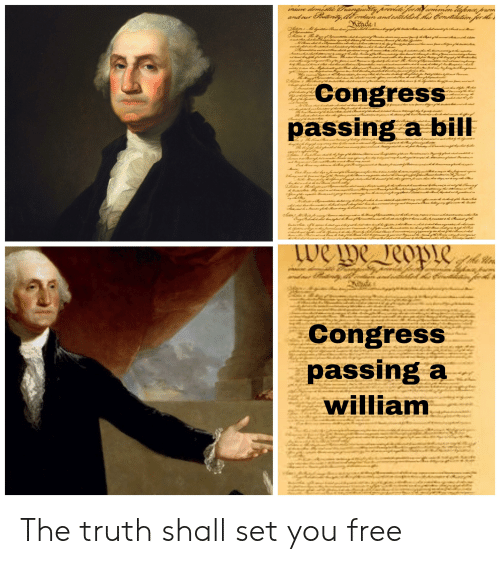 Reddit, Free, and Truth: imdiare demestie Tranguakity prevlide ferhY ommen lafena pum  and our tritdb ordan andestblsh Has Cenatildtin for He  Mnde  CongresS  passing a bill  z1  we  eo  Congress  passing a  william The truth shall set you free