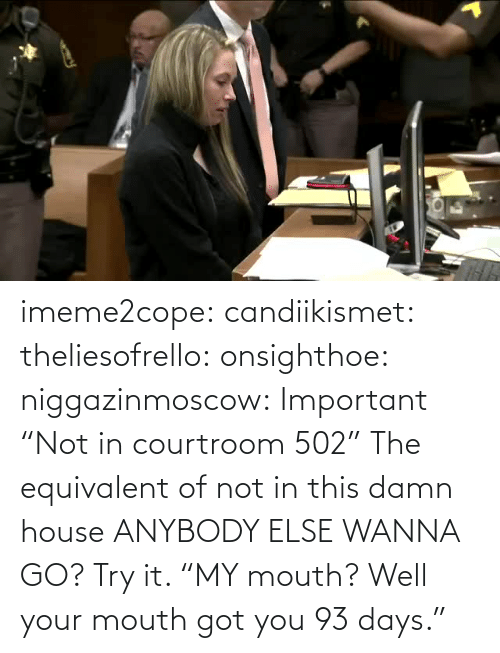 "anybody: imeme2cope:  candiikismet:   theliesofrello:   onsighthoe:   niggazinmoscow:  Important  ""Not in courtroom 502""   The equivalent of not in this damn house    ANYBODY ELSE WANNA GO?  Try it.     ""MY mouth? Well your mouth got you 93 days."""