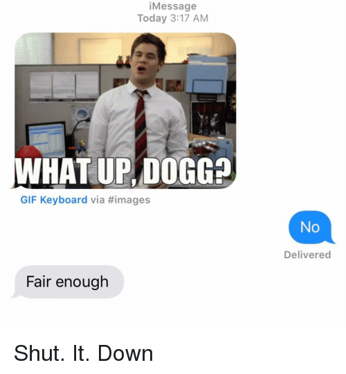 Shut It: iMessage  Today 3:17 AM  WHAT UP, DOGG?  GIF Keyboard via #images  No  Delivered  Fair enough Shut. It. Down