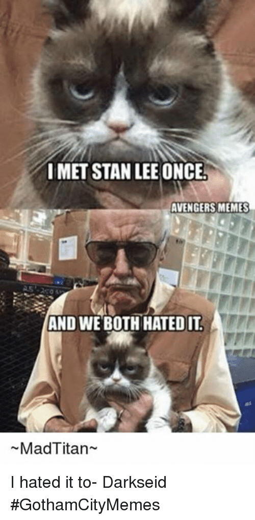 Avengers Meme: IMET STAN LEE ONCE!  AVENGERS MEMES  AND WE BOTH HATED IT  Mad Titan I hated it to- DarkseidΩ #GothamCityMemes
