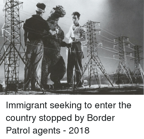Border Patrol, Enter, and Country: Immigrant seeking to enter the country stopped by Border Patrol agents - 2018