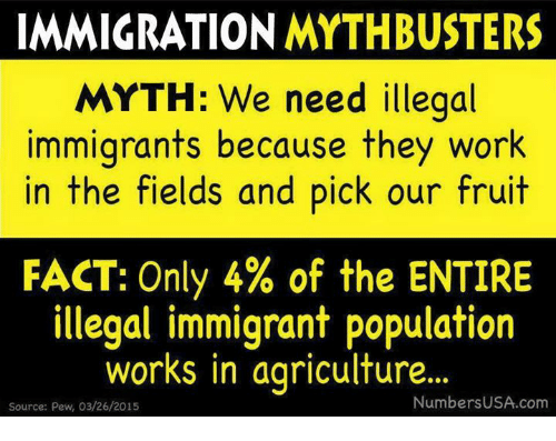 Memes, Work, and Immigration: IMMIGRATION MYTHBUSTERS  MYTH: We need illegal  immigrants because they work  in the fields and pick our fruit  FACT: Only 4% of the ENTIRE  illegal immigrant population  works in agriculture  ..  NumbersUSA.com  Source: Pew, 03/26/2015