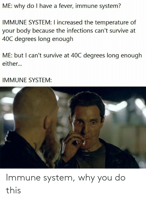 why you: Immune system, why you do this