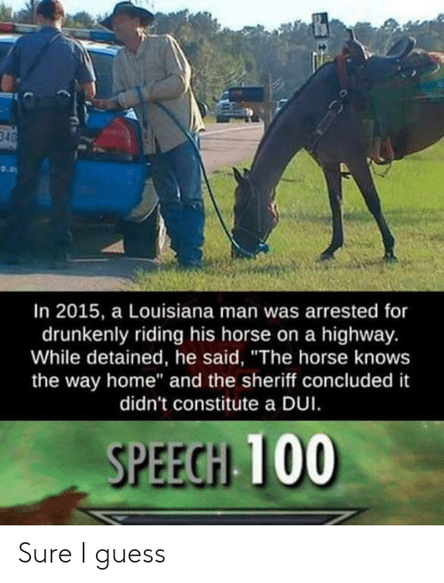 "Guess, Home, and Horse: In 2015, a Louisiana man was arrested for  drunkenly riding his horse on a highway.  While detained, he said, ""The horse knows  the way home"" and the sheriff concluded it  didn't constitute a DUI  SPEEGH 100 Sure I guess"