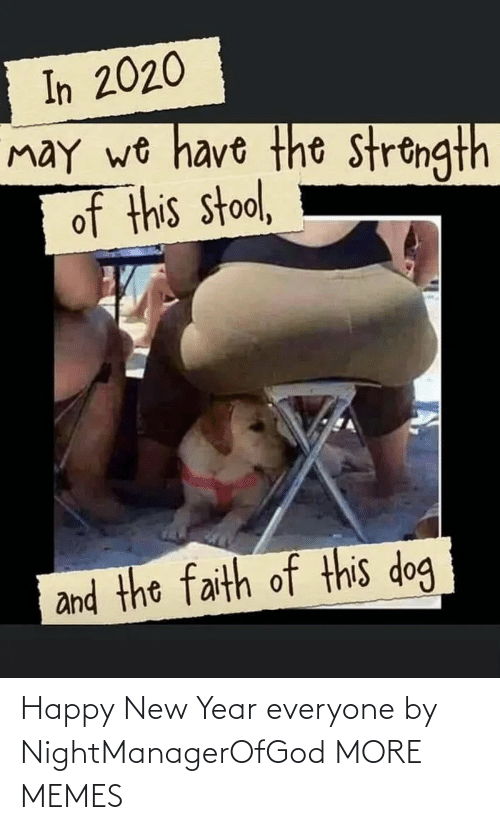 Faith: In 2020  may wo have the strongth  of this stool,  and the faith of this dog Happy New Year everyone by NightManagerOfGod MORE MEMES