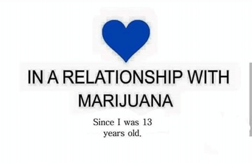 Memes, Marijuana, and Old: IN A RELATIONSHIP WITH  MARIJUANA  Since I was 13  years old.