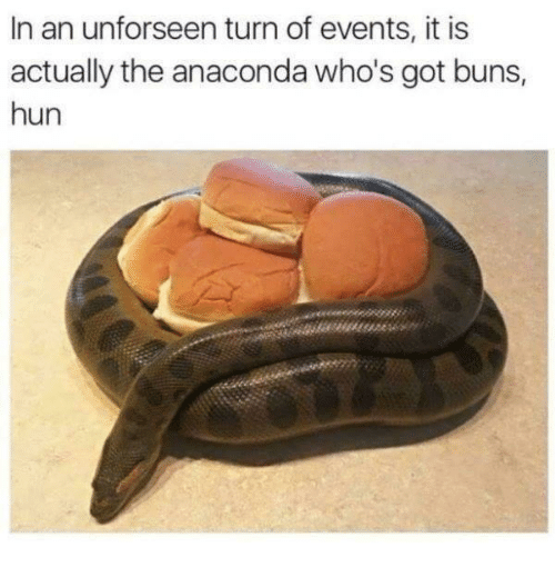 Anaconda, Got, and Events: In an unforseen turn of events, it is  actually the anaconda who's got buns,  hun