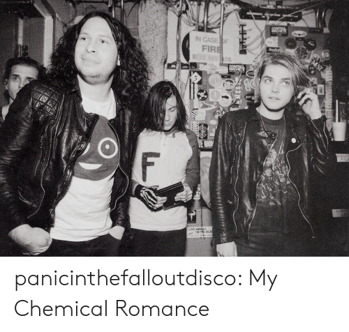 Tumblr, Blog, and Http: IN CASE br  FIR panicinthefalloutdisco:  My Chemical Romance