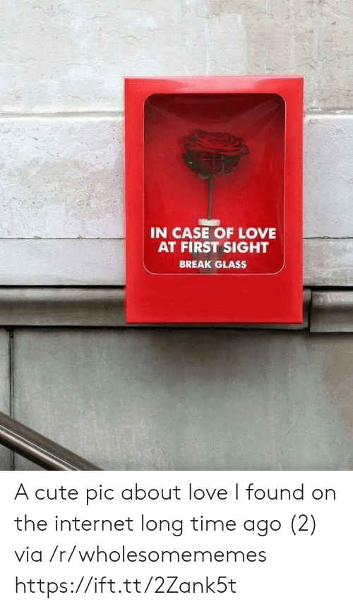 At First Sight: IN CASE OF LOVE  AT FIRST SIGHT  BREAK GLASS A cute pic about love I found on the internet long time ago (2) via /r/wholesomememes https://ift.tt/2Zank5t