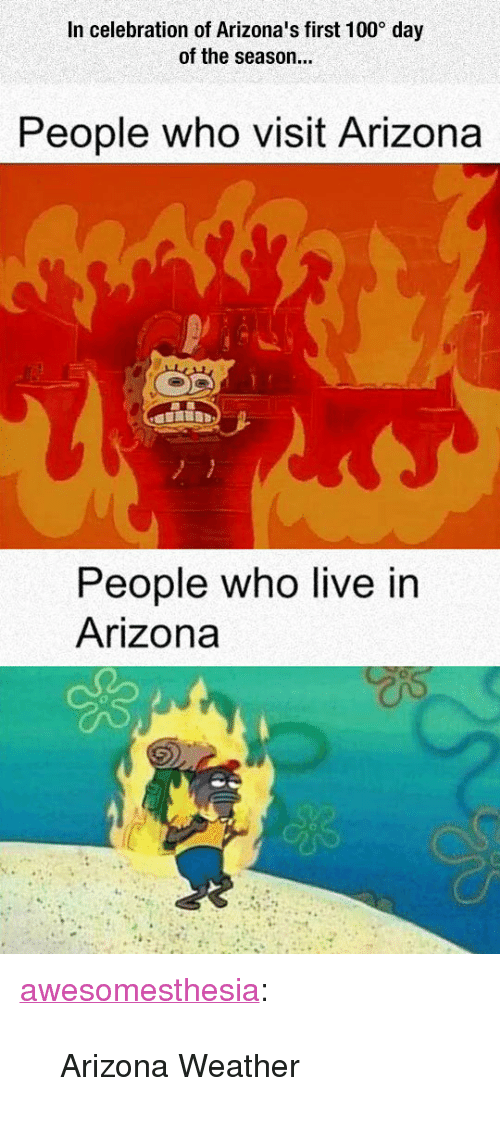 "Anaconda, Tumblr, and Arizona: In celebration of Arizona's first 100 day  of the season...  People who visit Arizona  People who live in  Arizona <p><a href=""http://awesomesthesia.tumblr.com/post/171131831147/arizona-weather"" class=""tumblr_blog"">awesomesthesia</a>:</p>  <blockquote><p>Arizona Weather</p></blockquote>"