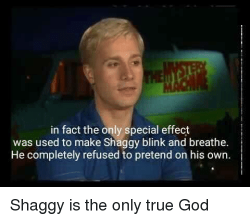 God, True, and Shaggy: in fact the only special effect  was used to make Shaggy blink and breathe.  He completely refused to pretend on his own. Shaggy is the only true God