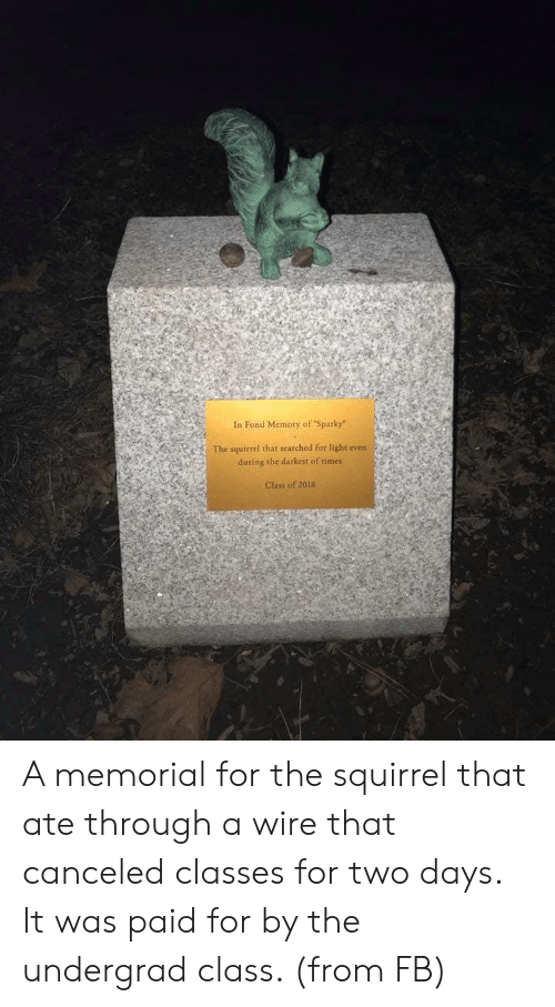 "Squirrel, Wire, and Class: In Fond Memory of ""Sparky""  The squirrel that searched for light even  during the darkest of times  Class of 2018 A memorial for the squirrel that ate through a wire that canceled classes for two days. It was paid for by the undergrad class. (from FB)"