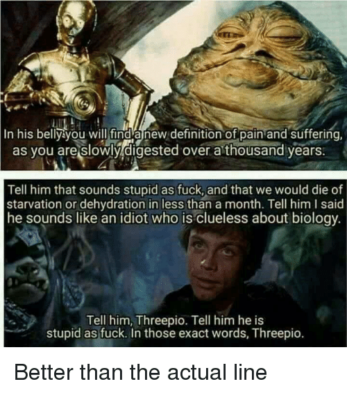 Funny, Clueless, and Definition: In his belly you will find anew definition of pain and suffering  as you are slowly digested over a thousand years  Tell him that sounds stupid as fuck, and that we would die of  starvation or dehydration in less than a month. Tell him I said  he sounds like an idiot who is clueless about biology  Tell him, Threepio. Tell him he is  stupid as fuck. In those exact words, Threepio. Better than the actual line