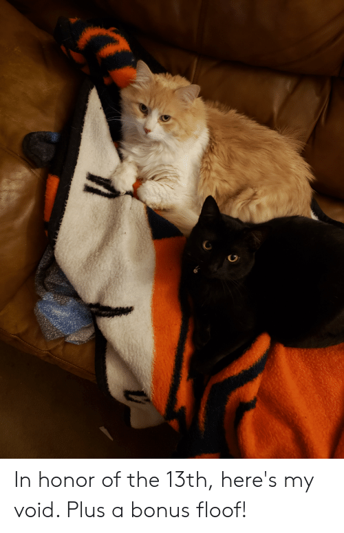 Void, Honor, and Floof: In honor of the 13th, here's my void. Plus a bonus floof!