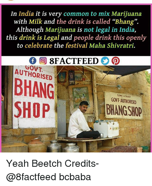 """Memes, Yeah, and Common: In India it is very common to mix Marijuana  with Milk and the drink is called """"Bhang"""".  Although Marijuana is not legal in India,  this drink is Legal and people drink this openly  to celebrate the festival Maha Shivratri.  GOVT.  AUTHORISED  COME &ENJO  GOVT AUTHORISED  BHANG SHOP  SHOP Yeah Beetch Credits- @8factfeed bcbaba"""