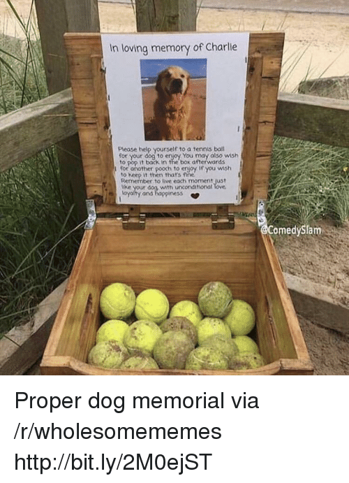 Charlie, Pop, and Help: In loving memory of Charlie  Please help yourself to a tennis bal  your dog to enjoy You may also wish  to pop it back in the box afterwards  for another pooch to erjoy If you wmsh  to Keep it then thars fine  Remember to live each moment just  e your dog with unconditional  oyalty and happiness *  omedySlam Proper dog memorial via /r/wholesomememes http://bit.ly/2M0ejST