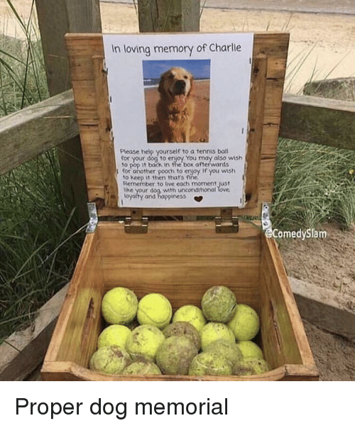 Charlie, Pop, and Help: In loving memory of Charlie  Please help yourself to a tennis bal  your dog to enjoy You may also wish  to pop it back in the box afterwards  for another pooch to erjoy If you wmsh  to Keep it then thars fine  Remember to live each moment just  e your dog with unconditional  oyalty and happiness *  omedySlam Proper dog memorial