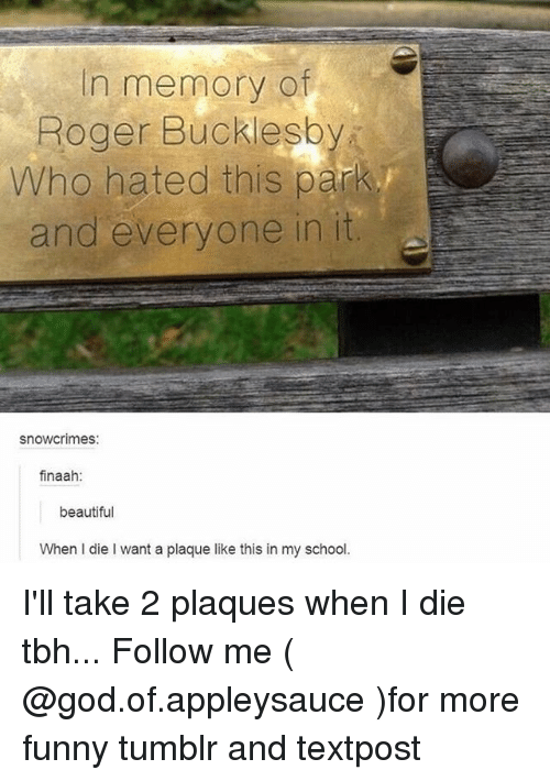 Rogering: In memory of  Roger Bucklesb  Who hated this park  and everyone in it  snowcrimes:  finaah  beautiful  When I die I want a plaque like this in my school. I'll take 2 plaques when I die tbh... Follow me ( @god.of.appleysauce )for more funny tumblr and textpost