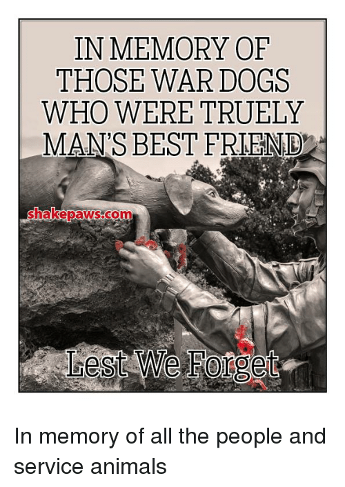 Animals, Best Friend, and Dogs: IN MEMORY OF  THOSE WAR DOGS  WHO WERE TRUELY  MAN'S BEST FRIEND  hakebawS CO In memory of all the people and service animals
