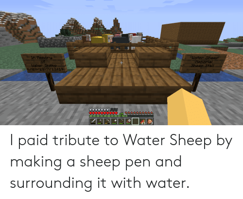 Water, Sheep, and Making A: In Merory  of  Water Sheep  6/23/19-7/13/19  Water Sheep  Memorial  Sheep Stall  15 I paid tribute to Water Sheep by making a sheep pen and surrounding it with water.