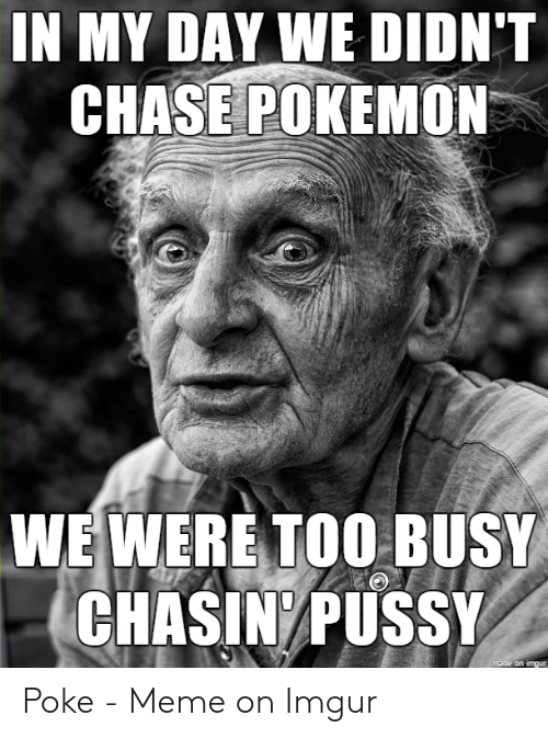 Meme, Pokemon, and Pussy: IN MY DAY WE DIDN'T  CHASE POKEMON  WE WERE TOO BUSY  CHASIN/PUSSY  made on imgur