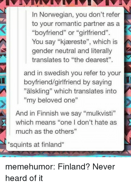 "Tumblr, Blog, and Http: In Norwegian, you don't refer  to your romantic partner asa  ""boyfriend"" or ""girlfriend"".  You say ""kjæreste"", which is  gender neutral and literally  translates to ""the dearest""  and in swedish you refer to your  ""älskling"" which translates into  boyfriend/girlfriend by saying  ""my beloved one""  And in Finnish we say ""mulkvisti""  which means ""one I don't hate as  much as the others""  squints at finland* memehumor:  Finland? Never heard of it"