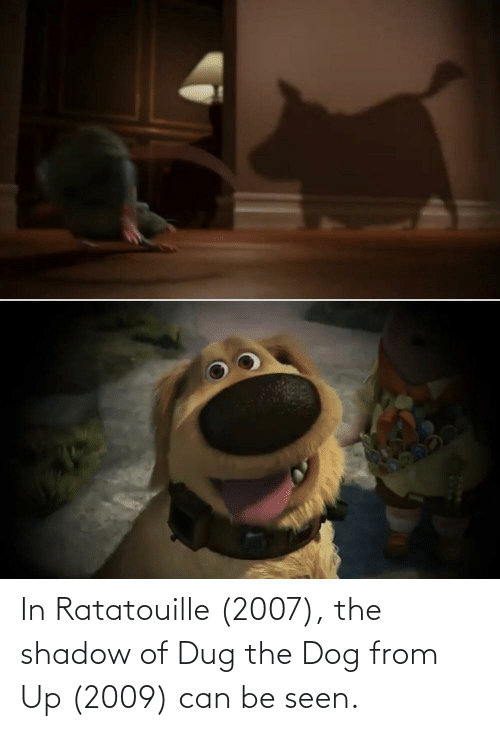 In Ratatouille 2007 The Shadow Of Dug The Dog From Up 2009 Can Be Seen Ratatouille Meme On Conservative Memes
