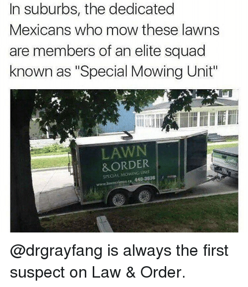 """Memes, Law & Order, and 🤖: In suburbs, the dedicated  Mexicans who mow these lawns  are members of an elite squad  known as """"Special Mowing Unit""""  LAWN  &ORDER  SPECIAL @drgrayfang is always the first suspect on Law & Order."""