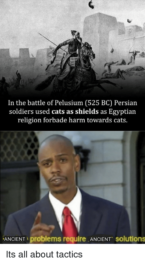 Persian: In the battle of Pelusium (525 BC) Persian  soldiers used cats as shields as Egyptian  religion forbade harm towards cats.  ANCIENT problems require ANCIENT solutions Its all about tactics