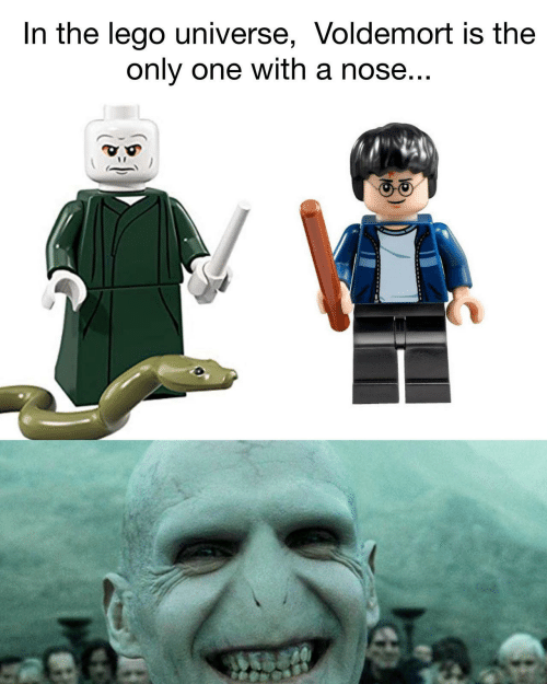 Lego, Only One, and Lego Universe: In the lego universe, Voldemort is the  only one with a nose