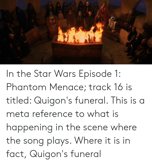 Star Wars, Star, and What Is: In the Star Wars Episode 1: Phantom Menace; track 16 is titled: Quigon's funeral. This is a meta reference to what is happening in the scene where the song plays. Where it is in fact, Quigon's funeral