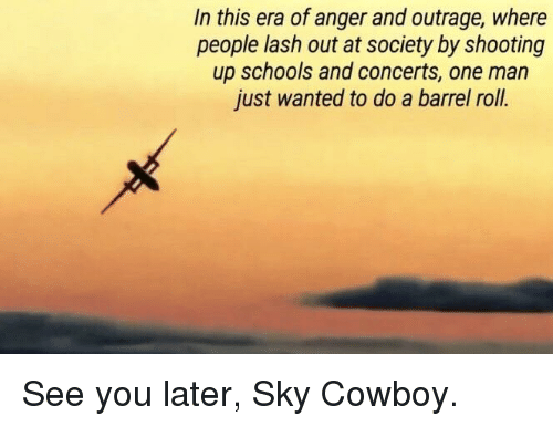 Do a Barrel Roll, Barrel Roll, and Dank Memes: In this era of anger and outrage, where  people lash out at society by shooting  up schools and concerts, one man  just wanted to do a barrel roll