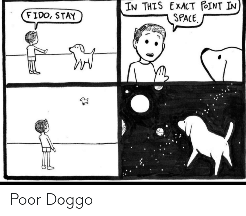 Exact: IN THIS EXACT POINT IN  SPACE  FIDO, STAY Poor Doggo