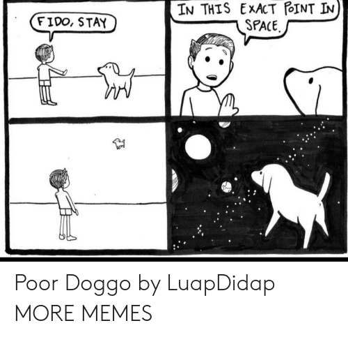 Exact: IN THIS EXACT POINT IN  SPACE  FIDO, STAY Poor Doggo by LuapDidap MORE MEMES