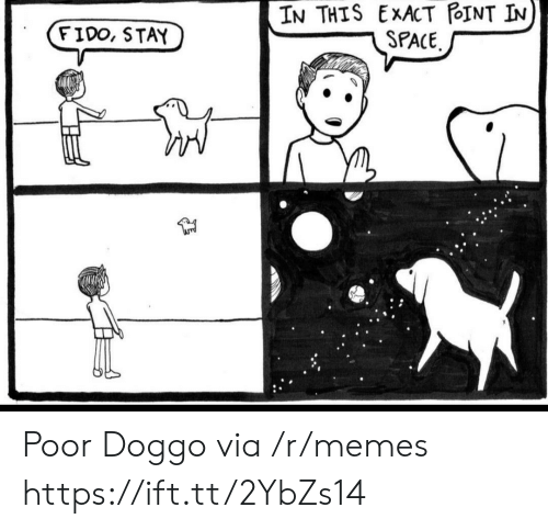 Exact: IN THIS EXACT POINT IN  SPACE  FIDO, STAY Poor Doggo via /r/memes https://ift.tt/2YbZs14