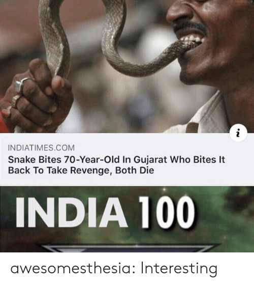 India: INDIATIMES.COM  Snake Bites 70-Year-Old In Gujarat Who Bites It  Back To Take Revenge, Both Die  INDIA 100 awesomesthesia:  Interesting
